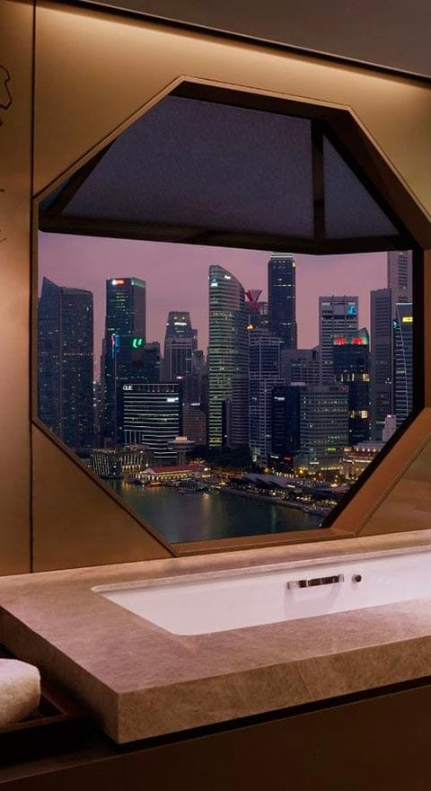 Tinostone-The-Ritz-Carlton-Millenia-Singapore
